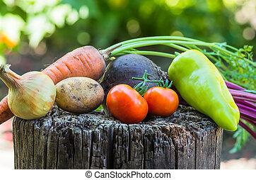 många, grönsaken, nära