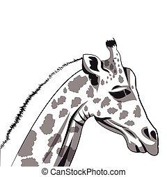 giraffe drawing icon - flat design giraffe drawing icon...