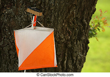 control point sign in orienteering with tree background