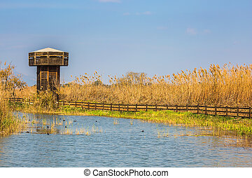 Wooden tower for bird watching. Hula Nature Reserve, Israel,...