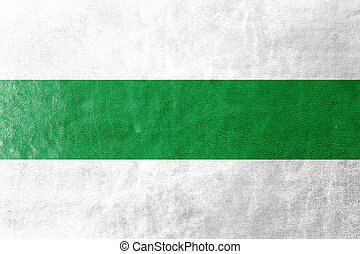 Flag of Groningen, Netherlands, painted on leather texture