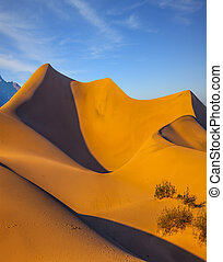 USA. Mesquite Flat Sand Dunes - Bright sunny morning in a...