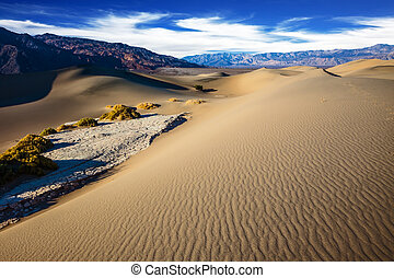The gentle curves of sand dunes - Hot and windy morning in...