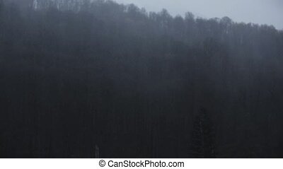 Rainfall in mountains, covered by green forest. Nature. Drizzle. Wetting