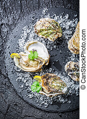 Tasty oysters on ice ready to eat