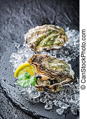 Tasty oysters on crushed ice ready to eat