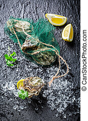Delicious oysters on ice with lemon