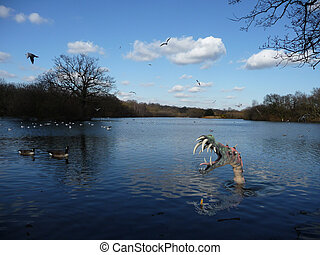 Monster In The Water - An image representing water based...