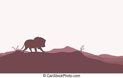 Silhouette of lion in the hills