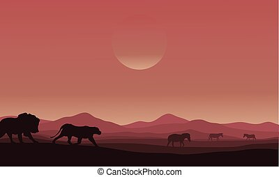 Silhouette of lion family in desert