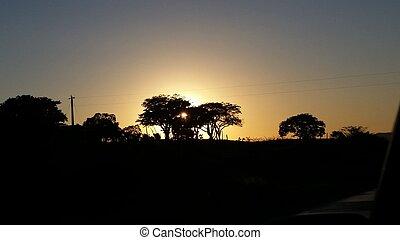 Sunset Nature - Lindo por do sol entre duas arvores.