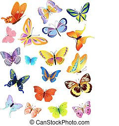 set of different butterflies