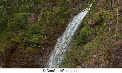 High Long Foamy Waterfall among Woody Cliffs - high long...