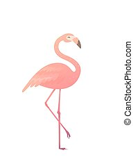 Vector illustration of a pink flamingo. Flamingo African...