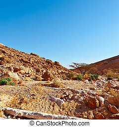 Negev Desert - Stones of Grand Crater in Negev Desert
