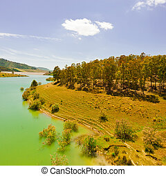 Lake in Sicily - The Shore of a Mountain Lake Covered with...
