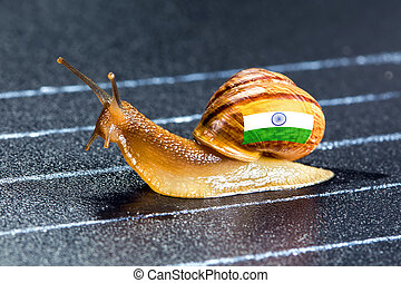 Snail under flag of India on sports track - Snail under the...