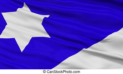 Branch Davidian Religious Close Up Waving Flag - Branch...