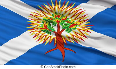 Church of Scotland Religious Close Up Waving Flag - Church...