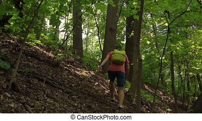 Hiker with green backpack walking in mountainous forest. 4K...