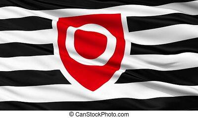 Tanos Close Up Waving Flag - Tanos Flag, Close Up Realistic...