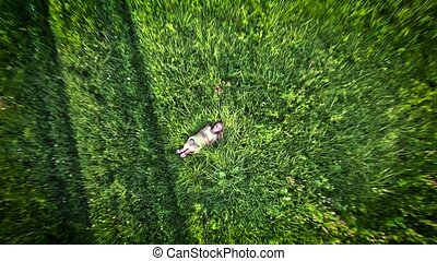 cute girl on grass - cute girl lying on grass Aerial view