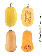 Four shots of butternut and spaghetti squashes -...