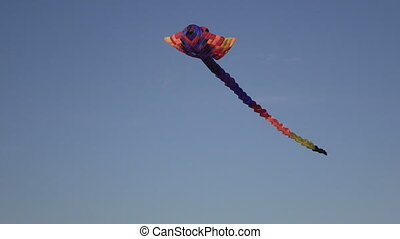 Air heaven snake in sky - In the summer sky hovering kite