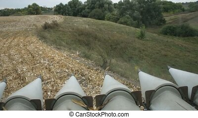 Combine harvester at cornfield - View from the cab of...