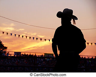 Cowboy In The Stands - A silhouetted man in a cowboy hat...