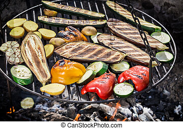 Grilling fresh vegetables with herbs in garden