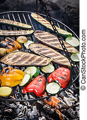 Grilling fresh vegetables with spices in garden