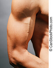 Bicep - Tough guy bicep ,close-up
