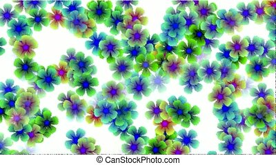 color wild flower flow background