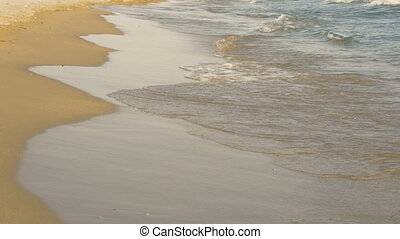 Crashing waves on beach is the most relaxing view. Tropical...