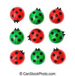 Group of ladybugs, isolated on white background