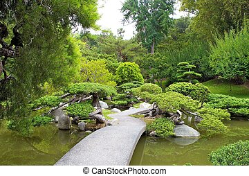 serene path - walkway through koi pond and banzai tree...