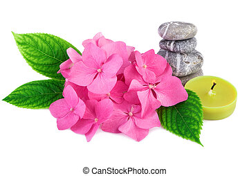Spa stones zen with pink flowers and candle on white background
