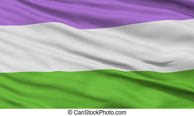 Genderqueer Pride Close Up Waving Flag - Genderqueer Pride...