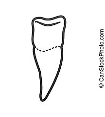 tooth dental care health hygiene icon. Vector graphic