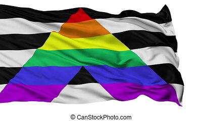 Straight Ally Close Up Waving Flag