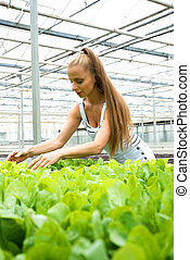 Young adult woman gardening in a greenhouse