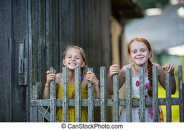 Two cute little girls looking through a wooden fence