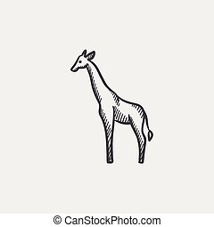 Giraffe sketch icon. - Giraffe sketch icon for web, mobile...