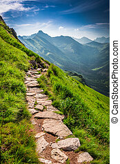 Mountains trail in Tatras at sunny day