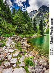 Beautiful pond in the Tatra Mountains at summer