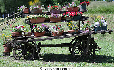 cart festooned with many pots of flowers in the meado