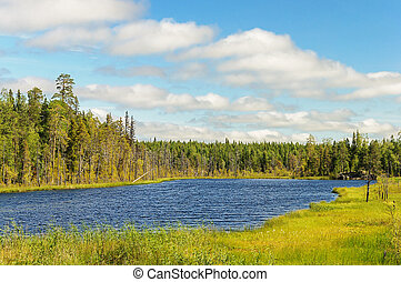 Small forest lake in Karelia, cloudy sky