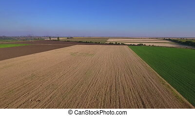 Aerial shot of a wheat field - Across a wheat field towards...