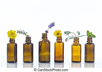 essential oils and medical flowers herbs on white